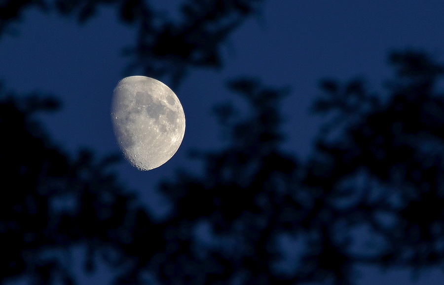 August Moon | NIKON 28-300MM F/3.5-5.6G ED VR <br> Click image for more details, Click <b>X</b> on top right of image to close