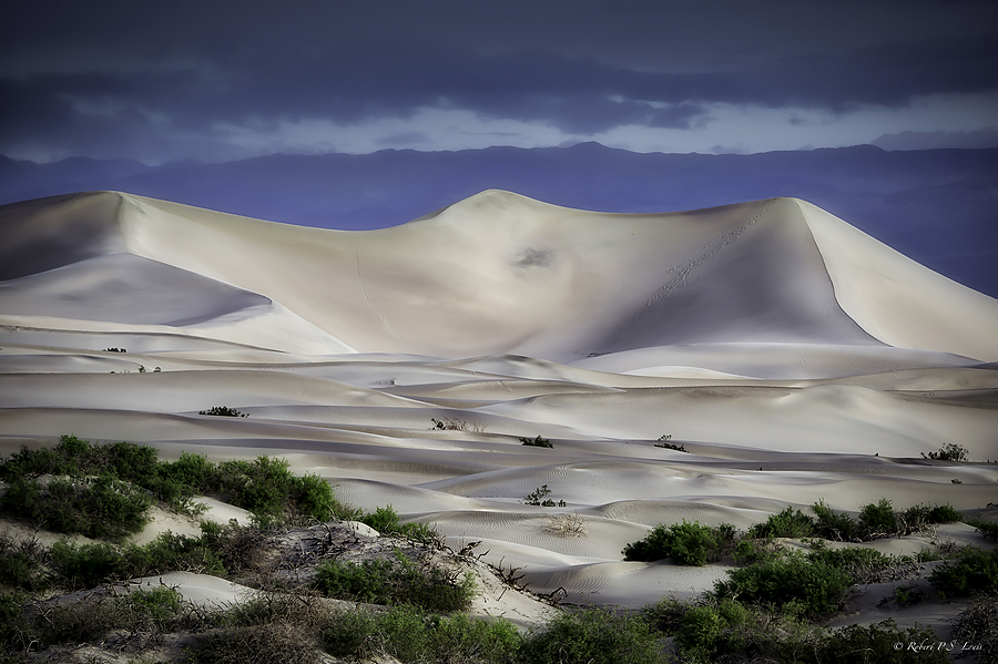 Dunes of Death Valley | NIKON AF-S 80-400MM VRII <br> Click image for more details, Click <b>X</b> on top right of image to close
