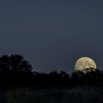 Moon Rise along St. Croix | NIKON AF-S 80-400MM VRII <br> Click image for more details, Click <b>X</b> on top right of image to close