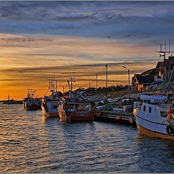 Shrimp Trawlers In Harbour | NIKON 16-85MM F/3.5-5.6G ED AF-S VR DX <br> Click image for more details, Click <b>X</b> on top right of image to close