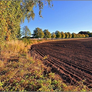 Autumn Plowed Fields | LENS MODEL NOT SET <br> Click image for more details, Click <b>X</b> on top right of image to close