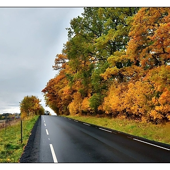 Country Road in October | NIKON 14-24MM F/2.8G ED AF-S N <br> Click image for more details, Click <b>X</b> on top right of image to close