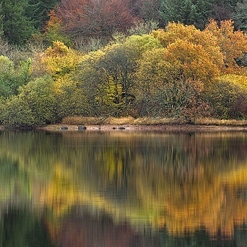 Autumnal Reflection | NIKON 70-300MM F/4.5-5.6G IF-ED AF-S VR <br> Click image for more details, Click <b>X</b> on top right of image to close