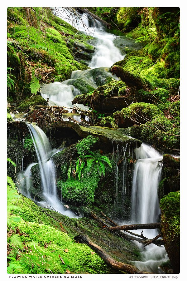 Flowing water gathers no moss | LENS MODEL NOT SET <br> Click image for more details, Click <b>X</b> on top right of image to close