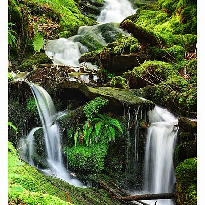 Flowing water gathers no moss | LENS MODEL NOT SET
