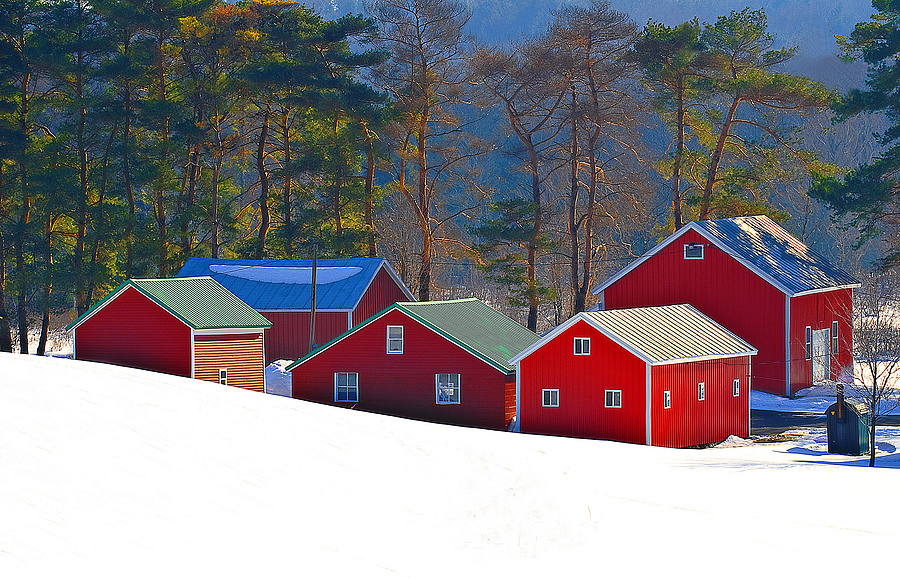 Lil Red Barns | NIKON 24-120MM F/4G ED VR <br> Click image for more details, Click <b>X</b> on top right of image to close
