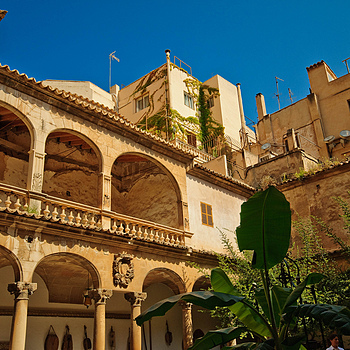 Palma Cathedral Courtyard. | SIGMA 10-20MM F4-5.6 <br> Click image for more details, Click <b>X</b> on top right of image to close