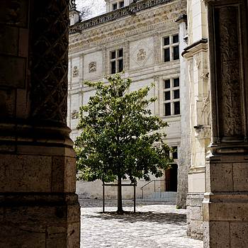 Blois | NIKON 18-70MM F/3.5-4.5G ED-IF AF-S DX <br> Click image for more details, Click <b>X</b> on top right of image to close
