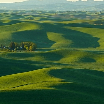 Palouse Wa,June 2013 | LENS MODEL NOT SET <br> Click image for more details, Click <b>X</b> on top right of image to close