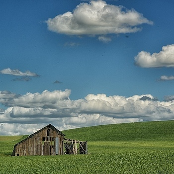 THE PALOUSE,WA 2013 | LENS MODEL NOT SET