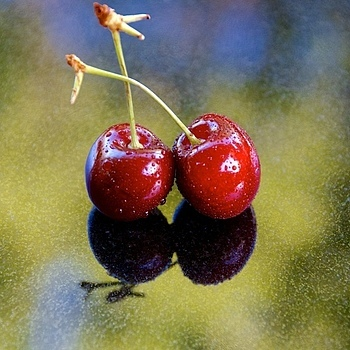 Two Cherries at Rest | NIKON 60MM F/2.8D AF MICRO <br> Click image for more details, Click <b>X</b> on top right of image to close