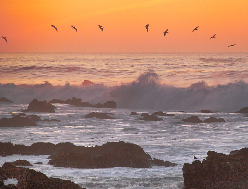Sunset over Asilomar | NIKON 18-135MM F/3.5-5.6G ED-IF AF-S DX <br> Click image for more details, Click <b>X</b> on top right of image to close