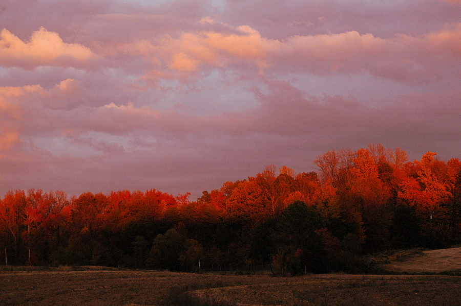 Fall Sunset | NIKON 24-120MM F/4G ED VR <br> Click image for more details, Click <b>X</b> on top right of image to close