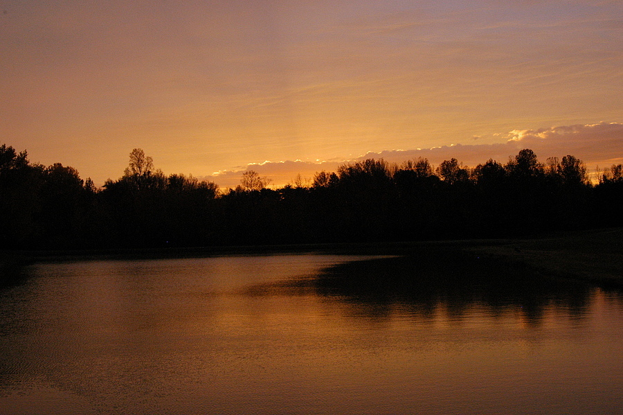 Sunset at the pond | NIKON 24-120MM F/4G ED VR <br> Click image for more details, Click <b>X</b> on top right of image to close