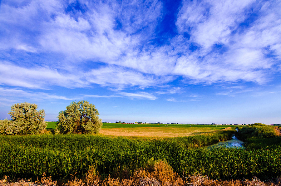Mud Lake Farm Fields Idaho | LENS MODEL NOT SET <br> Click image for more details, Click <b>X</b> on top right of image to close