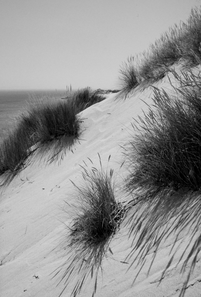 Shadows on the Beach | NIKON 24MM F/2.8 <br> Click image for more details, Click <b>X</b> on top right of image to close
