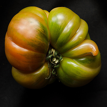 Tomatoe | NIKON 50MM F/1.4D AF <br> Click image for more details, Click <b>X</b> on top right of image to close