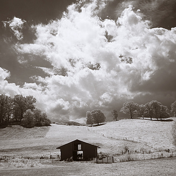 """Black Barn"" 