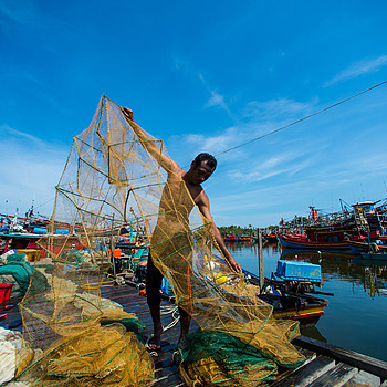 Fishing Net Cleaning | NIKON 14MM F/2.8D ED AF <br> Click image for more details, Click <b>X</b> on top right of image to close