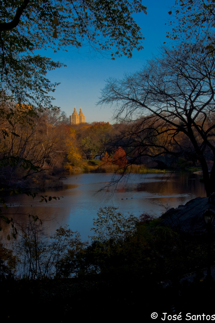 NYC Central Park | NIKON 35MM F/1.8G AF-S DX <br> Click image for more details, Click <b>X</b> on top right of image to close