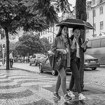 Rainy day | NIKON 35MM F/2.0D AF <br> Click image for more details, Click <b>X</b> on top right of image to close