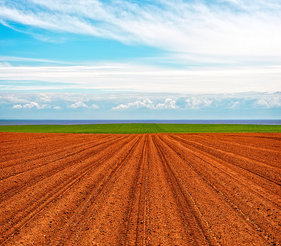 Furrows, Grass, Water, Sky | LENS MODEL NOT SET <br> Click image for more details, Click <b>X</b> on top right of image to close
