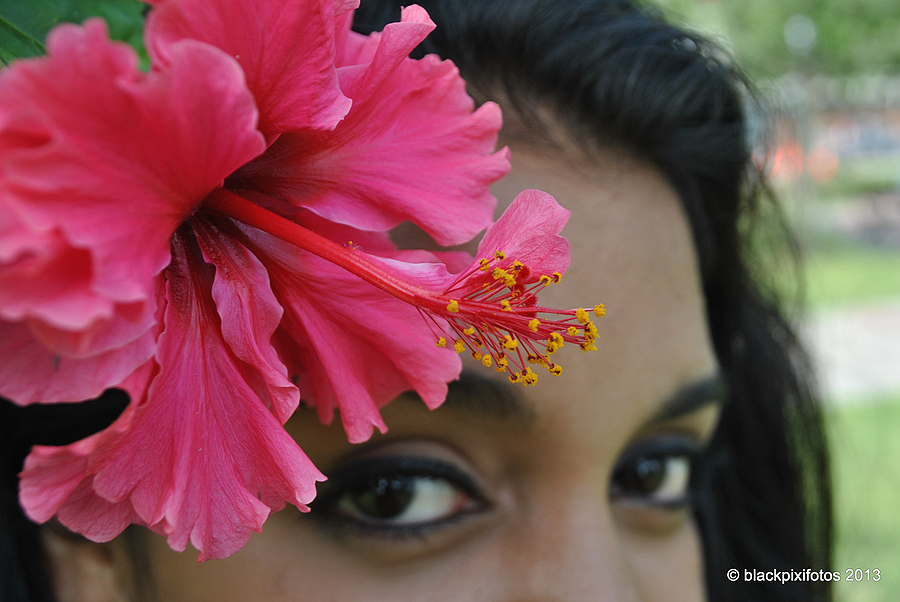Hibiscus Eyes #2 | LENS MODEL NOT SET <br> Click image for more details, Click <b>X</b> on top right of image to close