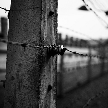 barbwire auschwitz | NIKON 28-70MM F/2.8D ED-IF AF-S <br> Click image for more details, Click <b>X</b> on top right of image to close