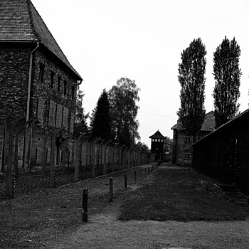 auschwitz | NIKON 28-70MM F/2.8D ED-IF AF-S <br> Click image for more details, Click <b>X</b> on top right of image to close