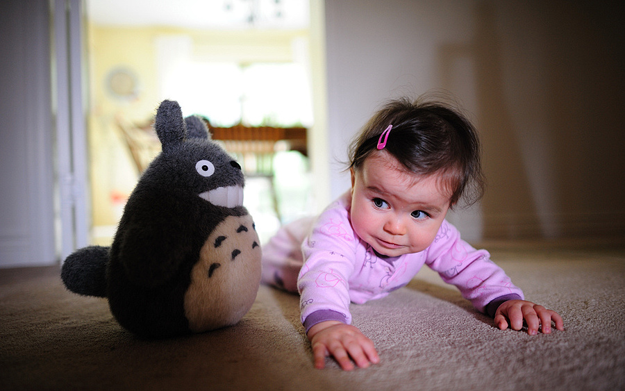 kate & totoro | NIKON 24MM F/1.4G ED AF-S <br> Click image for more details, Click <b>X</b> on top right of image to close
