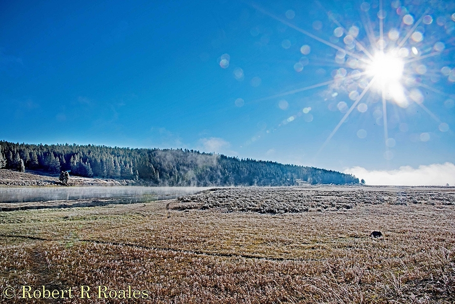 Yellowstone NP on a frosty morning | NIKON 24-120MM F/3.5-5.6G AF-S VR <br> Click image for more details, Click <b>X</b> on top right of image to close