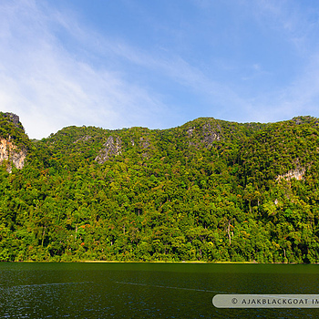 Tasik Dayang Bunting | NIKON 24-70MM F/2.8G ED AF-S N <br> Click image for more details, Click <b>X</b> on top right of image to close