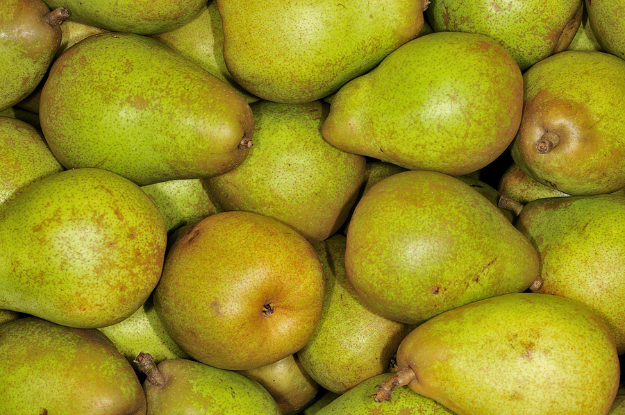 Pears | NIKON 55MM F/3.5 MICRO <br> Click image for more details, Click <b>X</b> on top right of image to close