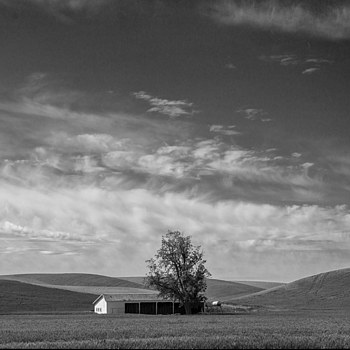 Farm shed | NIKON 28-300MM F/3.5-5.6G ED VR <br> Click image for more details, Click <b>X</b> on top right of image to close