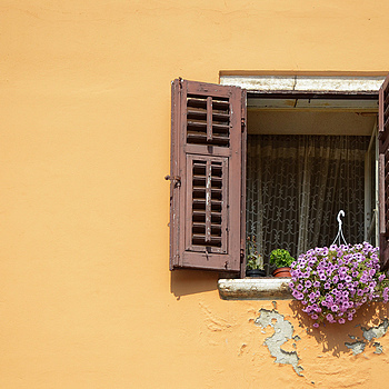 Window... | NIKON 18-105MM F/3.5-5.6G ED-IF AF-S VR DX