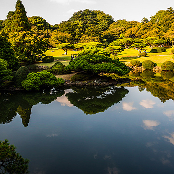 Shinjuku Gyoen | ZEISS ZF-II DISTAGON T* F2.0 25MM <br> Click image for more details, Click <b>X</b> on top right of image to close