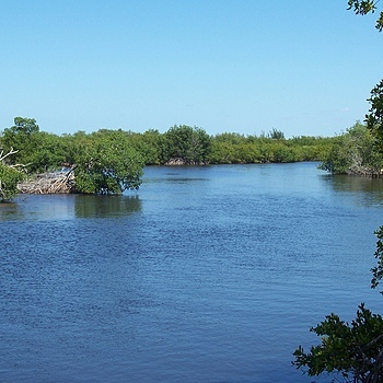 Sirenia Vista Park / Cape Coral Florida | LENS MODEL NOT SET <br> Click image for more details, Click <b>X</b> on top right of image to close