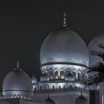 Grand Mosque - Abu Dhabi #4 | NIKON 28-300MM F/3.5-5.6G ED VR <br> Click image for more details, Click <b>X</b> on top right of image to close