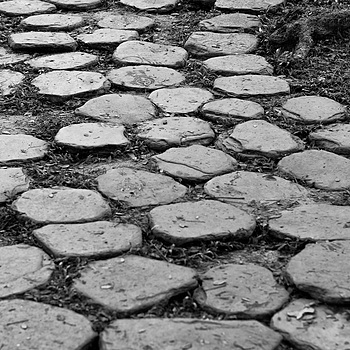 A stony garden path | NIKON 50MM F/1.4 <br> Click image for more details, Click <b>X</b> on top right of image to close