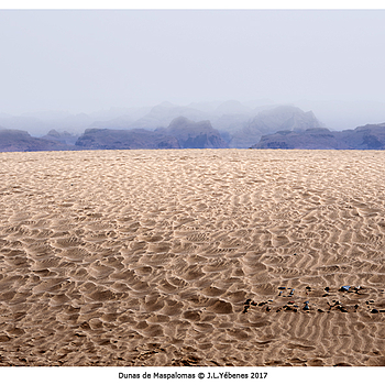 Sand II | NIKON 85MM F/1.8D AF <br> Click image for more details, Click <b>X</b> on top right of image to close