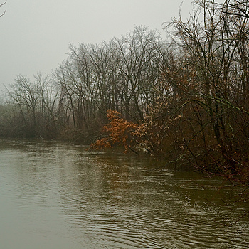 Des Plaines River in spring flood, drizzle | NIKON 55MM F/3.5 MICRO <br> Click image for more details, Click <b>X</b> on top right of image to close
